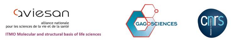 Logos GDR Gagosciences - Aviesan - ITMO BMSV - CNRS
